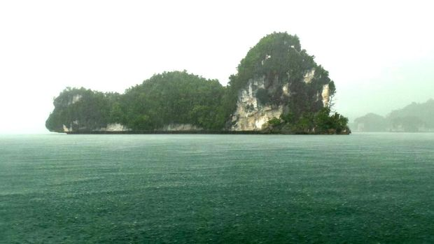 Menjelajahi kawasan Teluk Kabui ketika hujan (Wahyu/detikTravel)