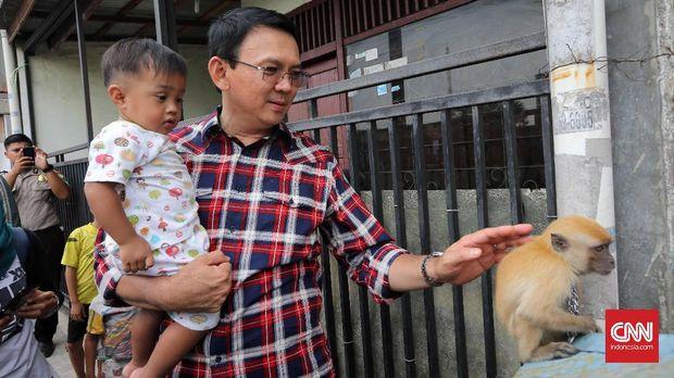 Basuki Tjahaja Purnama dalam salah satu aktivitas kampanye. (CNN Indonesia/Safir Makki)
