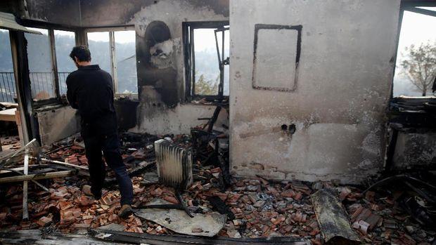 Kebakaran Hutan Merajalela di Israel, Separuhnya karena Kesengajaan