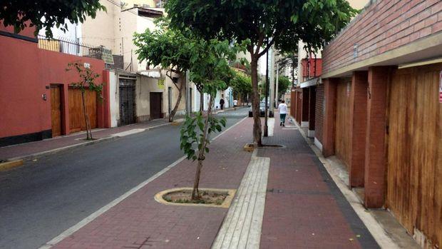 Hati-hati, banyak ranjau kotoran anjing kalau jalan-jalan pagi di kota Lima, Peru (Angga/detikTravel)
