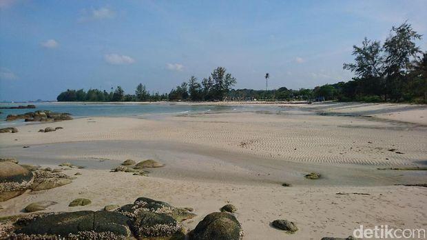Pantai Trikora yg landai dan indah (Masaul/detikTravel)