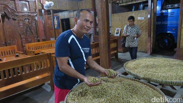 Pengunjung dapat melihat biji kopi secara segera (Haris/detikTravel)