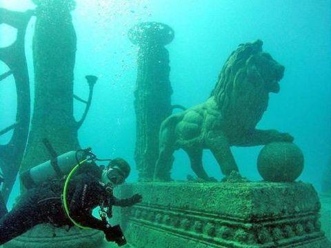 Menyelami Neptune Memorial Reef (Neptune Memorial Reef/Facebook)