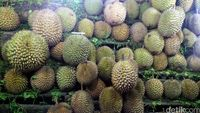 Durian-durian di lapak Irfan (Wahyu/detikTravel)