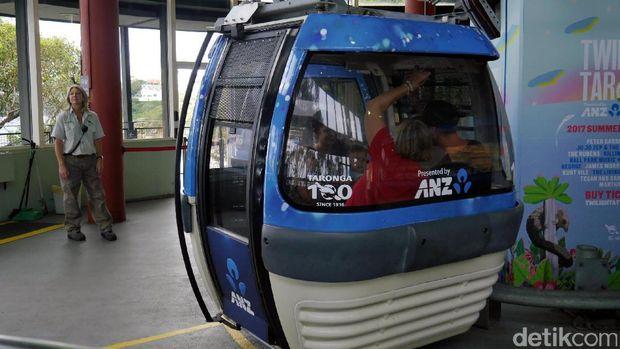 Naik gondola di Taronga Zoo (Wahyu/detikTravel)