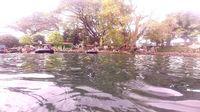 Lagi di Pasuruan, Yuk Berenang Mesra Bareng Ribuan Ikan