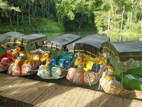 Ada fasilitas sepeda perahu (Aminudin/detikTravel)