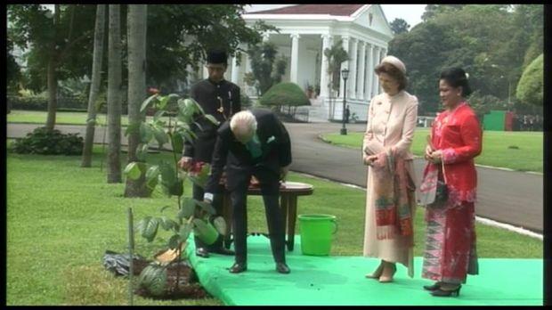 Presiden Jokowi mempersilakan Raja Swedia menanam pohon.