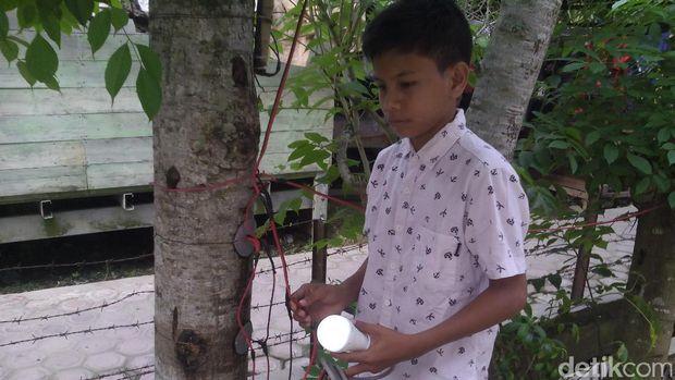 Naufal Raziq bocah penemu listri dari pohon kedondong.