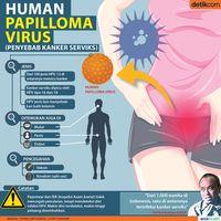 Kanker serviks dipicu oleh infeksi HPV (Human Papilloma Virus)
