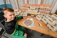 Jual Telur Ayam, Bocah 8 Tahun Ini Sukses Jadi Jutawan