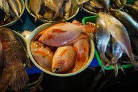 Hadiri Santap Malam 'Samudra Nusantara 100% Indonesia'