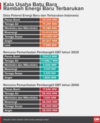Potensi Bisnis Energi Baru dan Terbarukan