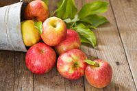 Apel juga bisa meningkatkan stamina seksual.