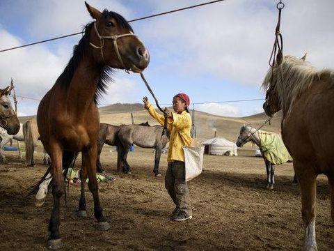 Anak Mongol yang Merawat Kuda Pacuan./Foto: Johannes Eisele Photography