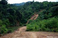 Medan yang harus dilalui untuk menuju Desa Suruh Tembawang.