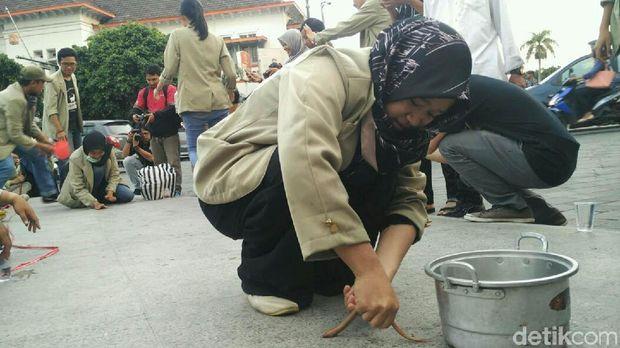 Mahasiswa menangkap belut