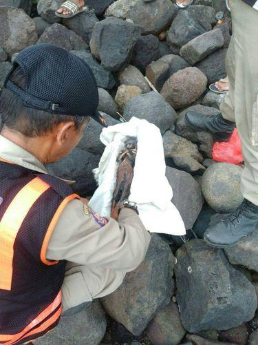 Begini Jenglot yang Ditemukan di Pantai Watu-watu Surabaya