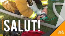 Dramatis! Aksi Pemadam Kebakaran Selamatkan Nyawa Seekor Anjing