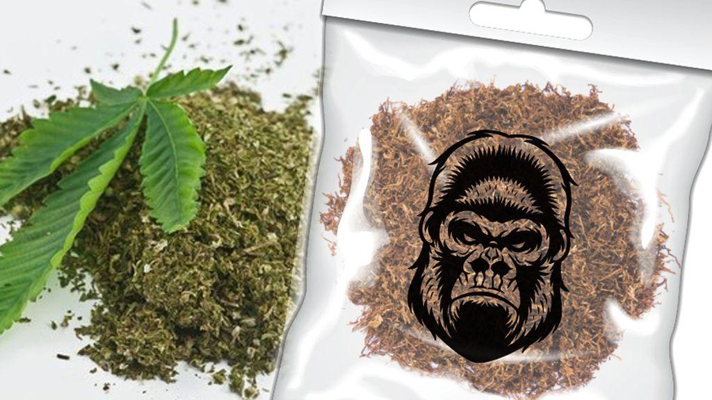 Wah! Tembakau Gorila Ternyata Ramai Dijual di Instagram