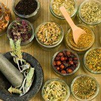 Adakah Terapi Herbal untuk Kanker Rahim?