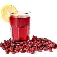 Jus Cranberry Bisa Mencegah Infeksi Saluran Kemih