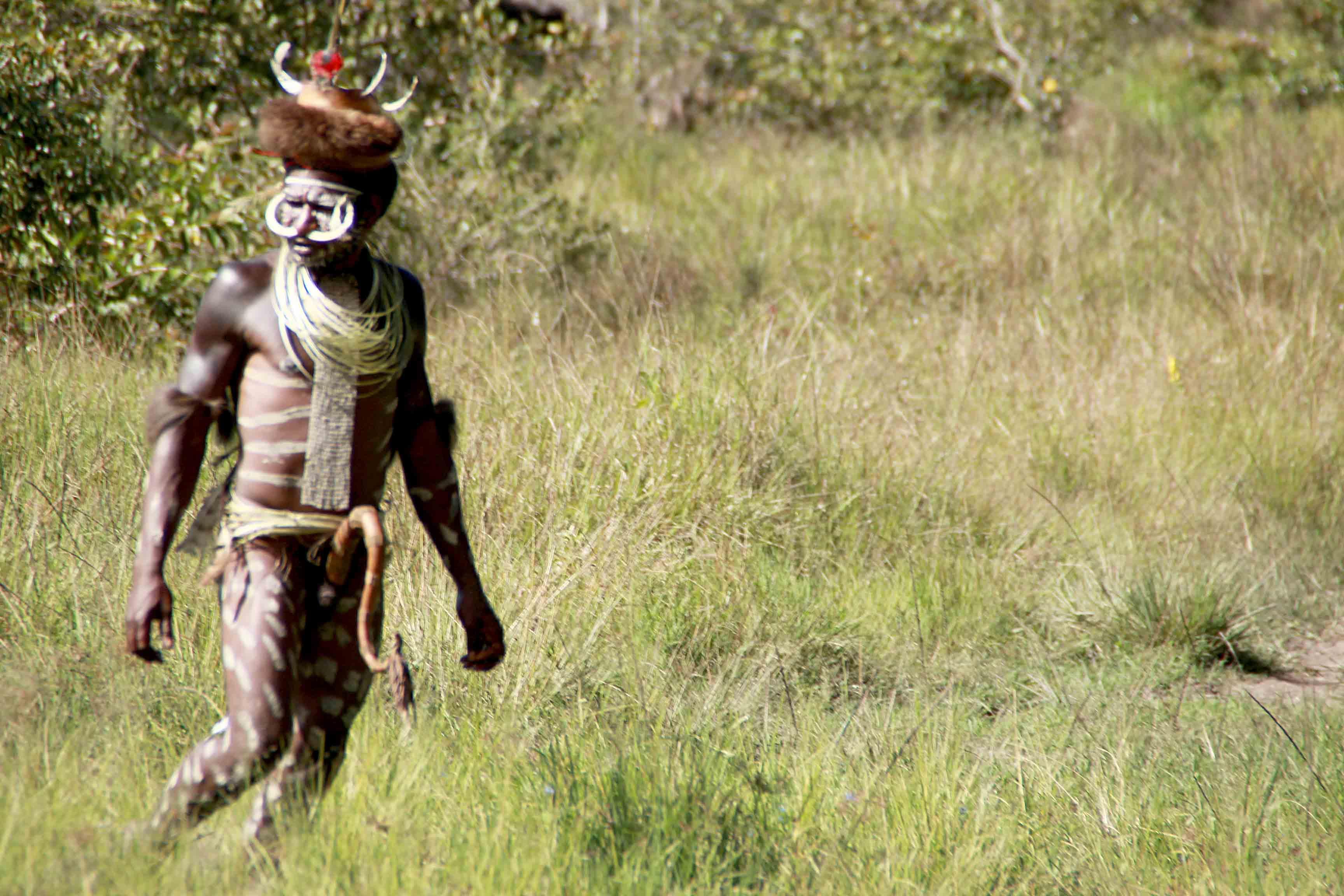 Gagahnya Panglima Perang Suku Dani, Papua - 6