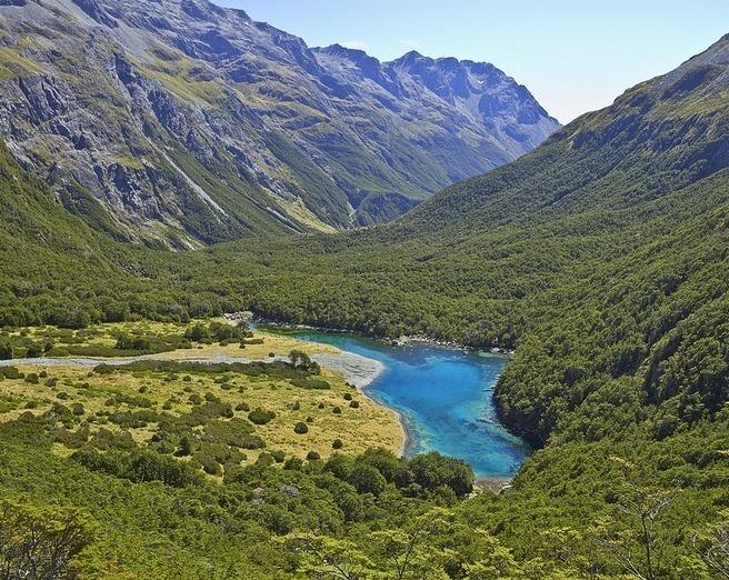 Selandia Baru Picture