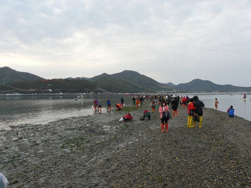 Hasil carian imej untuk laut jindo Korea, laut terbelah