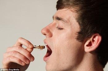Peter Bickerton, Pria yang Makan Serangga Agar Tubuhnya Tetap Fit dan Bugar