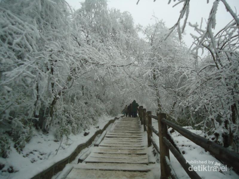 Saat Gunung yang Suci di China Tertutup Salju  5