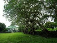 Kompleks Benteng Liya Togo -  Wangi-wangi