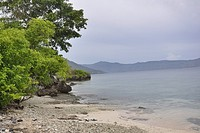 Pemandangan terlihat di Pulau Kepa