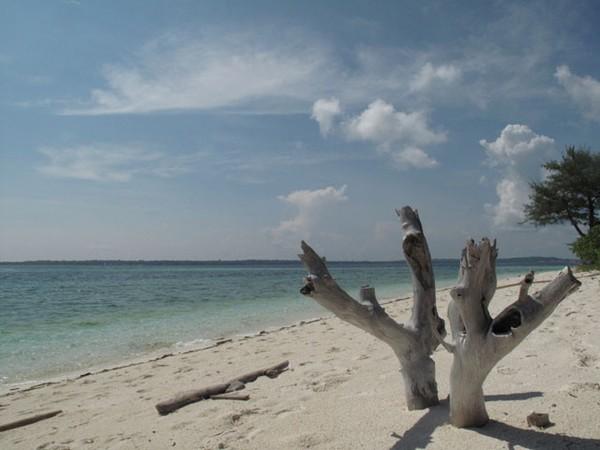 Pantai Pulau Adranan
