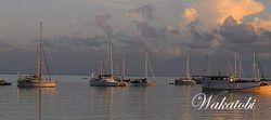 Sail Wakatobi: Melestarikan Samudera untuk Masa Depan