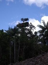 Rumah setinggi 30 meter (Erwin Yogaswara/ACI)