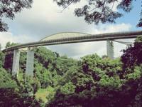 Jembatan di Henderson Road