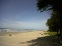 Meneduh di bawah pohon rindang (rejanglebong.blogspot.com)