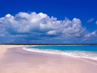 Cantiknya pantai Pink Sands (art.co.uk)