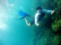 Keindahan bawah laut Pulau Pahawang
