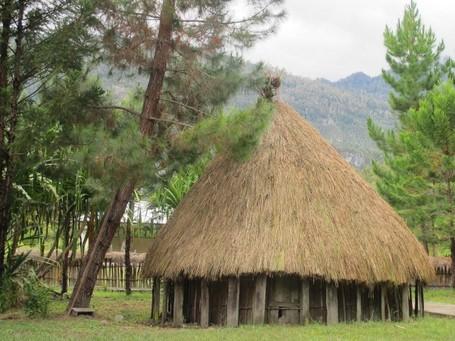 Mengintip Keunikan Honai, Rumah Adat Suku Dani