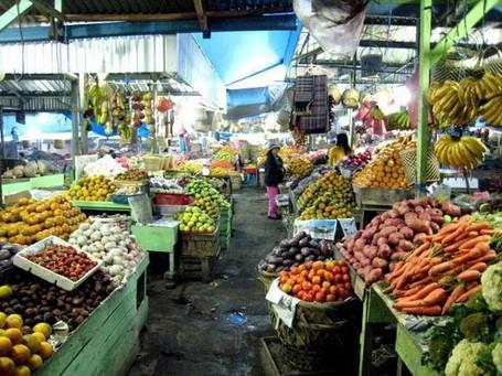 Belanja Sehat dan Segar di Pasar Berastagi
