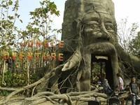 Pintu Masuk Jungle Adventure