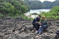Jalur trekking Pulau Sempu