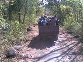Mengamati Keanekaragaman Satwa di Africa van Java