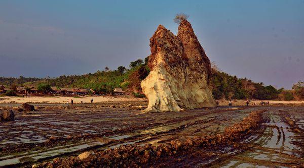 Karang di Pantai Tanjung Layar