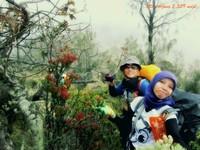 warna-warni tumbuhan menuju puncak Arjuno
