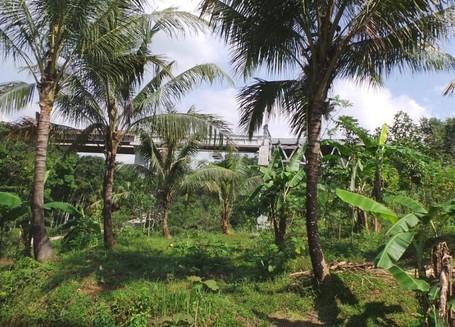 Pemandangan di Tol Semarang-Bawen Tak Kalah Cantik dengan Cipularang