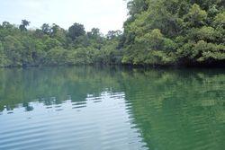 Danau Haji Buang, Kembaran Danau Kakaban di Derawan