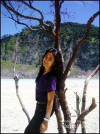 Pohon mati ini membuat pemandangan di sekitar Kawah Putih menjadi tampak indah